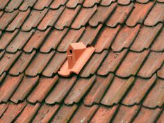 Shrinking urban bird populations led Dutch designer Klaas Kuiken to design a Birdhouse Rooftile that replaces a standard ceramic roof tile.