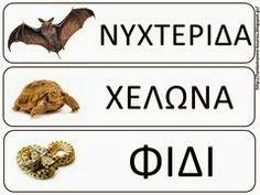 ΧΕΙΜΕΡΙΑ ΝΑΡΚΗ.