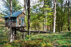The Tiny Fern Forest Treehouse - Treehouses for Rent in Lincoln, Vermont, United States