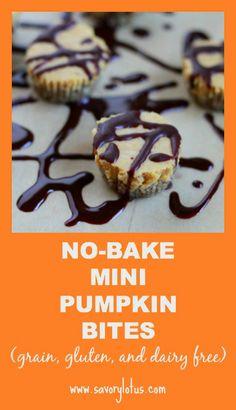 No-Bake Mini Pumpkin Bites (grain and dairy free) | savorylotus.com