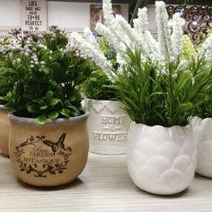 Hoy Jueves de Decoración 10% de Descuento PBX:3222023 My Room, Planter Pots, Instagram Posts, Flowers, Thursday, Royal Icing Flowers, Flower, Florals, Floral