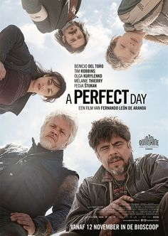 A Perfect Day poster 1