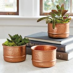 Ballard Designs Hammered Copper Planter Collection - Set of 3 (€28) ❤ liked on Polyvore featuring home, home decor, copper home decor, ballard designs, copper home accessories, handmade home decor and succulent planter