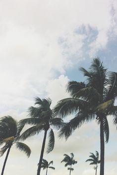 #Florida #vscocam #vscogrid @Kyle Dawson Dawson Dawson Bragger Bragger Hepp