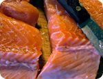 Wild Salmon to be Extinct in 10 Years