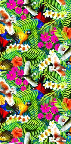 patterns.quenalbertini: Tropical pattern - kalimo | coquita