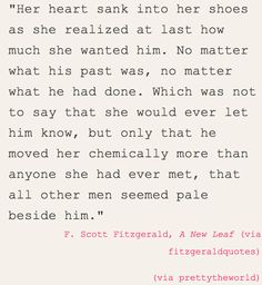 Absolutely Beautiful; f. scott fitzgerald