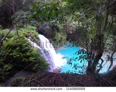 Find Blue River Waterfall Turquoise Waterfall Hidden stock images in HD and millions of other royalty-free stock photos, illustrations and vectors in the Shutterstock collection. Thousands of new, high-quality pictures added every day. Kawasan Falls, Summer Trees, Philippines, Tourism, Waterfall, Photo Editing, Beautiful Places, Scenery, Places To Visit