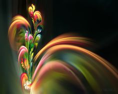 Fractal - Art Flowerings 79 by eyalhh from http://mi9.com/creative-fractal-art-flowerings-79_63679.html