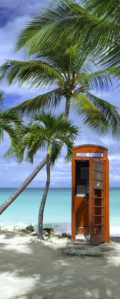 Two of my favorite things: Palm tree and a British phone booth Telephone Booth, Big Photo, Beaches In The World, Destin Beach, Cities, Beautiful Beaches, Strand, Beautiful World, Palm Trees