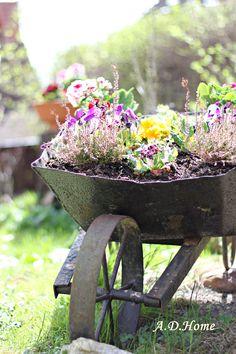 kwiaty, dom, ogród, dekoracje ogrodowe, wiosna