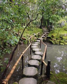 ~ early this morning, the zen gardens at Tenju-an were empty, and, by skilful design, augmented by all the nothingness ~