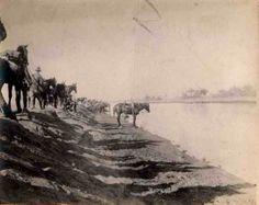 Roy Dalrymple Wellington Mounted Rifles New Zealand