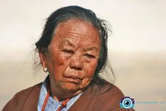 Tibbetan Woman 105 Years Old Photography Seek