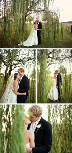 love these pics..... You could do this with our trees we have!