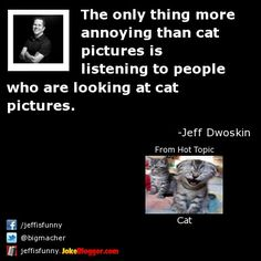 The only thing more annoying than cat pictures is listening to people who are looking at cat pictures. -  by Jeff Dwoskin