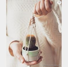 DIY: how to make a macrame plant suspension? Diy Projects Apartment, Wie Macht Man, Macrame Projects, Macrame Knots, Macrame Patterns, Diy Planters, Crochet Home, Diy On A Budget, Plant Hanger