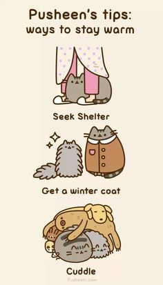 Pusheen, a cute Web comic. His coat. Hee hee.