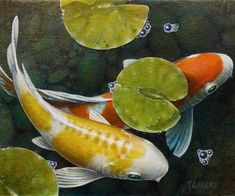 Koi original acrylic painting auspicious koi pond series for Koi pool thornton