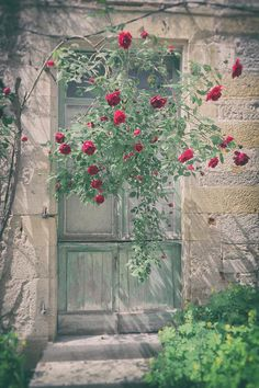 Roses Over A French Door Photograph by Georgia Fowler