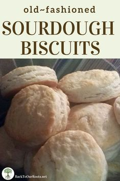 Flaky Butter Sourdough Biscuits - Make them plain or add cinnamon and raisins. Make them savory with ham and cheese. Sourdough Biscuits, Sourdough Recipes, Sourdough Rolls, Bread Rolls, Bread Recipes, Bakery Recipes, Flour Recipes, Real Food Recipes, Cooking Recipes