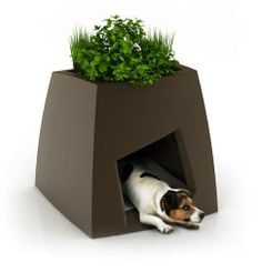 Adorable Doghouse Seating - The Fido Chair and Pet Kennel Invites Master and Mutt to Sit Together (GALLERY)