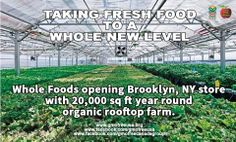 How cool is this?! Whole Foods is about to open a new store with a year round organic rooftop farm in Brooklyn, NY. Brings a whole new meaning to farm fresh!