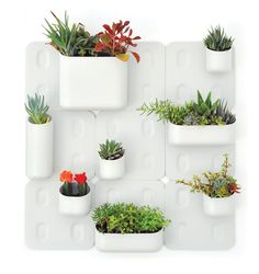 Check out the latest Impressive Urbio Wall Garden Indoor Herb Garden Design Idea design ideas from Tina Violet to improve your space. Vertical Garden Systems, Vertical Garden Design, Vertical Gardens, Vertical Planter, Pot Jardin, Herbs Indoors, Small Space Gardening, Balcony Garden, Herb Garden