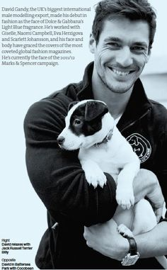 Battersea Dogs & Cats Home; Ambassador David Gandy....could he be any more perfect....