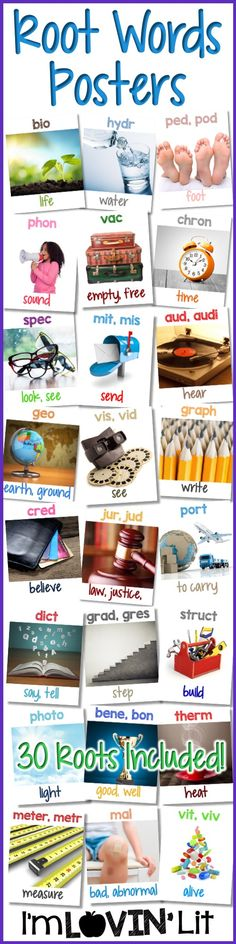 Greek and Latin Roots Posters Vocabulary Strategies, Teaching Vocabulary, Teaching Reading, Vocabulary Games, Spanish Vocabulary, Learning, 4th Grade Writing, 4th Grade Reading, Esl