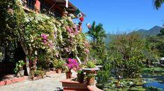 Puerto Vallarta, Mexico-Vallarta Botanical Gardens