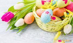 Kochani życzymy zdrowych, radosnych, wypełnionych miłością i spokojem. Świąt Wielkanocnych, smacznego jajka oraz mokrego dyngusa.