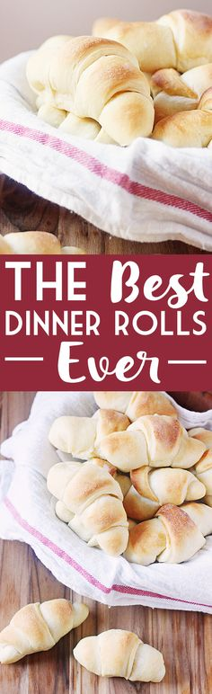"Best Dinner Rolls EVER -- Touted as ""my closely guarded dinner roll recipe,"" it is still the best dinner rolls recipe ever. Like, in the history of ever. My family requests these at every family dinner. You can totally use the dough for cinnamon rolls too! 