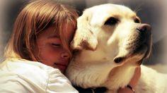 #Dog #Hugs http://goo.gl/fb/sLnivw  #animals