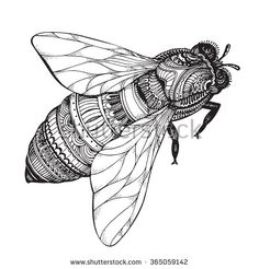Hand drawn honey bee in zentangle style. Black and white vector illustration - stock vector