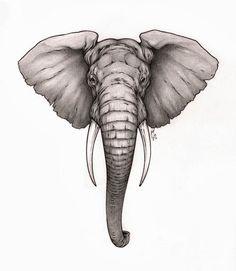 elephant head tattoo elephant tattoo black little kid elephant and ...