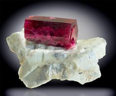 View 1: This Red Beryl has a huge thick blood red crystal, doubly terminated, sitting on a stark white matrix. The crystal is among the largest I have ever seen, and the color is as fine and rich as they get. It has some gem sections and is overall perfect. The stark deep red against the pure white matrix is very striking. Red Beryl is unique in the world and  has only been found in Utah (and a few minor examples in New Mexico).