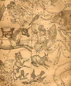 The constellation of the hunter Orion, with his dogs Canis Major and Canis Minor, in Burritt's Geography of the Heavens, New York, 1856 Constellations, Celestial Map, Constellation Tattoos, Constellation Orion, Star Chart, Look At The Sky, My Sun And Stars, Old Maps, The Villain