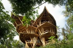 Sharma Springs / IBUKU The TED talk for these projects are awesome! I love me a good tree house!