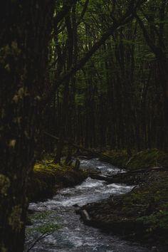arroyo huemul by matialonsor
