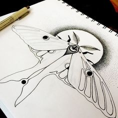 Instagram media by floraluna_designs - Working on this luna moth design today…