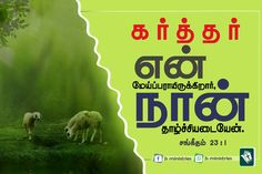 Peace Bible Verse, Bible Words, Bible Quotes, Bible Verses, Tamil Bible, Bible Verse Wallpaper, Faith, Wallpapers, Wallpaper