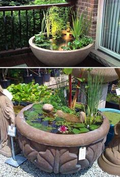 24 Fairy Tale Charming And Inexpensive DIY Mini Ponds In Pots To Do  Homesthetics Decor