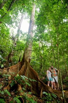 Family Portrait Photography in Costa Rican Jungle by John Williamson