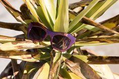 New collection Penelopesunglasses #irrezistible