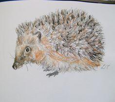 Scrbbly sketchbook hedgehog by Lisa Toppin.