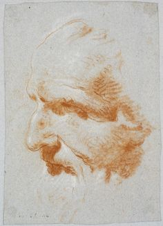 Giovanni Battista Tiepolo Italian, 1696-1770. Study after Alessandro Vittoria's Bust of Giulio Contarini, ca. 1743. Red and white chalks on blue paper, 23.7 x 16.5 cm (9 5/16 x 6 1/2 inches) (approx.) - RISD MUSEUM