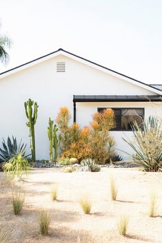 modern desert-chic home desert landscaping Outdoor Spaces, Outdoor Living, Outdoor Decor, Interior Exterior, Exterior Design, Interior Architecture, San Diego Houses, Desert Homes, Backyard Lighting