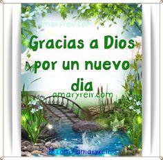 Amar Vivir Sentir y Sonreir: Gracias Dios