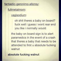 absolute fucking walnut omg I just died
